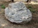 Groppo del Vescovo limestone