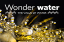 Wonder water - the value of water