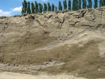 Alluvial sediments
