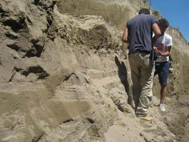 alluvial deposits