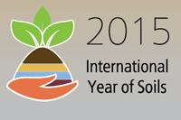 Banner IYS 2015