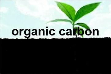 Banner organic carbon