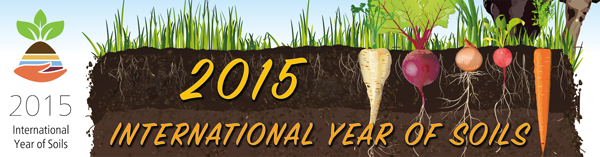 YIS 2015-banner