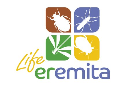 Life eremita  Project