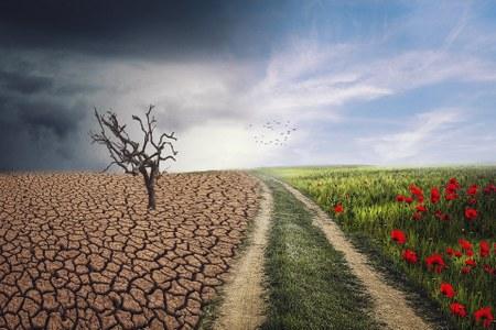 Proiezioni climatiche 2021- 2050 per Aree Omogenee