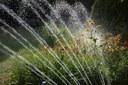 Un'App per irrigare in modo efficiente: un laboratorio tecnico-scientifico di Budrio lo rende possibile