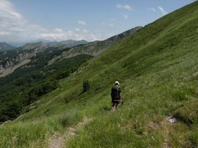 foto: Verso il Monte Orsaro (Autore Antonella Lizzani)