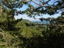 foto: Verso Monte Cavallo (Autore Antonella Lizzani)