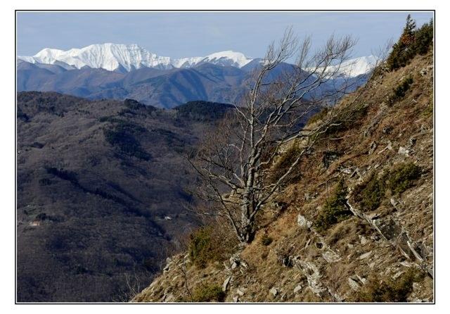 foto: Corno alle Scale dal Parco dei Laghi (Scalette) (Autore Brunero Lucarini)