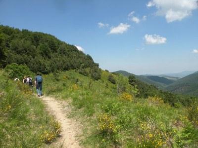 foto: Crinale nei pressi del Lago del Brasimone (Autore Antonella Lizzani)