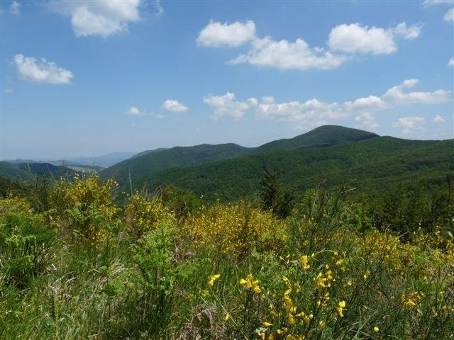 foto: Panorama nei pressi di Monte Calvi (Autore Maria Vittoria Biondi)