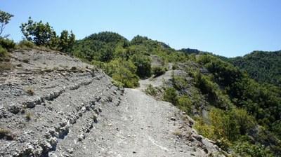 foto: Crinale sentiero Marradi (Fonte Archivio Parco Nazionale Foreste Casentinesi)