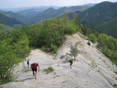 foto: Colle del Tramazzo (Fonte Archivio Parco nazionale Foreste Casentinesi)