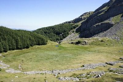 foto: Torbiera presso il Passo di Badignana (Autore Nevio Agostini)