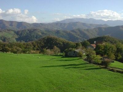 foto: Eremo dei Toschi (Fonte Archivio Parco nazionale Foreste Casentinesi)