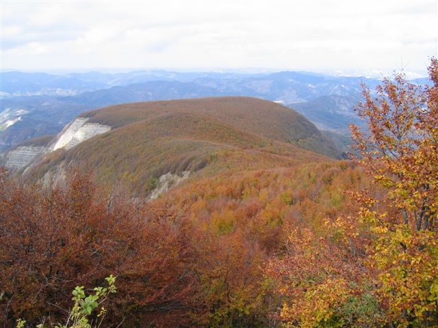foto: Pian delle Fontanelle da Monte Falco (Autore Fiorenzo Rossetti)