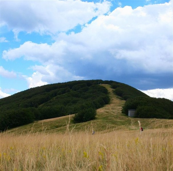 foto: Verso il  Monte Gabrendo dai Prati della Burraia (Autore Fiorenzo Rossetti)