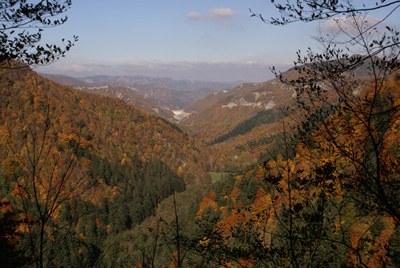 foto: La Foresta della Lama vista dagli Scalandrini (Fonte Archivio Parco nazionale Foreste Casentinesi)