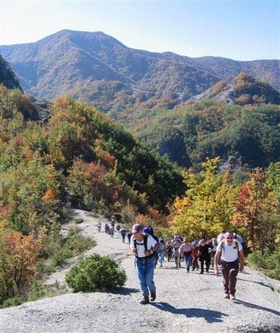 foto: Monte Zuccherodante (Fiorenzo Rossetti)