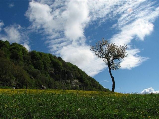 foto: Le Balze (Autore Fiorenzo Rossetti)
