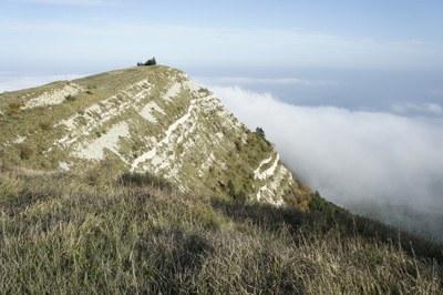 foto: La cima del Monte Carpegna (Autore Nevio Agostini)