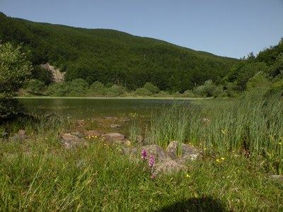 foto: Lago Verdarolo (Autore Antonella Lizzani)
