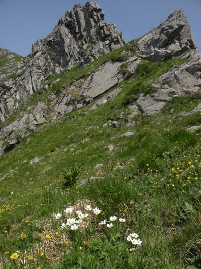 foto: Passo di Pietra Tagliata (Autore Antonella Lizzani)