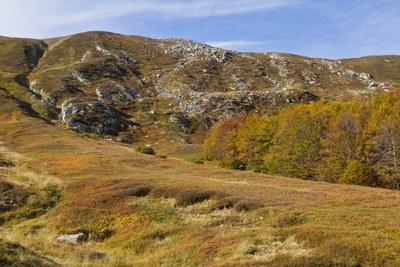 foto: Nei pressi del Passo di Lama Lite (Fonte Archivio Parco Nazionale Tosco-Emiliano)