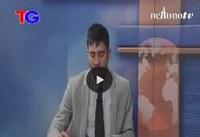AVP 501 - Servizio Nettuno TV