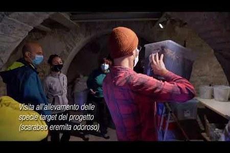 """Progetto """"Life eremita"""" - Escursione"""