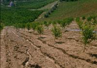 Immagine di   accesso al sito dell'erosione del suolo