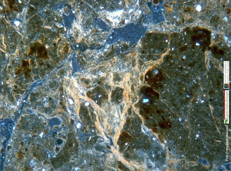 Particolare di una sezione sottile di suolo (orizzonte Bss)
