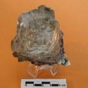 Topazio, grande cristallo in Pegmatite