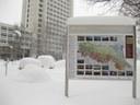 Il Giardino Geologico sotto la neve