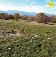 Alla sommità della Pietra di Bismantova si apre una vertiginosa veduta sulla parete rocciosa, sui pendii sottostanti e sui vicini Gessi Triassici. Lungo il pendio che scende dolcemente verso nord ovest si legge la corrispondenza tra la giacitura degli strati e l'andamento del versante. I prati e i seminativi che rivestono il pendio un tempo erano molto più vasti.Con l'abbandono dei terreni agricoli avvenuto negli anni '50 - '60, arbusti e alberi hanno progressivamente ricolonizzato le aree aperte, cambiando gli ambienti e il paesaggio.
