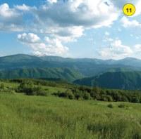 Lungo il sentieroche scende in direzione di Ginepretosi coglie una veduta d'insieme del versante sud orientale della Pietra, di cui si apprezza l'estensione dei detriti di falda, corrispondente ai versanti ripidi che si sviluppano ai suoi piedi.Interessanti prospettive si aprono sulla valle del Secchia e sulle montagne reggiane e modenesi. In direzione del fondovalle spiccano nel paesaggio le pronunciate dorsali modellate nei gessi triassici, delimitate da dirupi scoscesi, nelle quali si aprono numerose grotte carsiche.