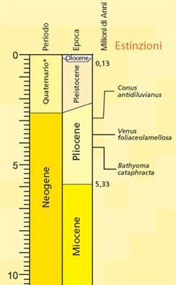Scala tempo geologico