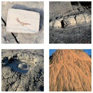 Beni geologici