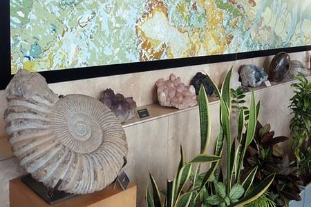 La collezione geologica
