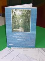 Analisi dell'ecosistema Bosco della Mesola - valle Falce e definizione di un sistema di controllo per la gestione ottimale - Relazione generaleVolume di 196 pagine + Carta della vegetazione del Bosco della Mesola in scala 1:10.000 + Carta dei suoli del Bosco della Mesola in scala 1:10.000, anno 1985
