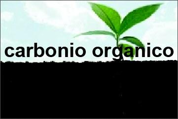 Banner carbonio organico