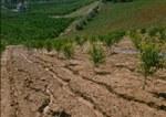 Sistema informativo dell'erosione dei suoli
