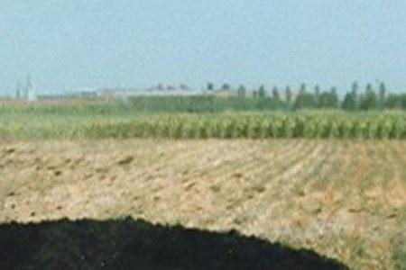 Biodisponibilità dei metalli pesanti nel suolo