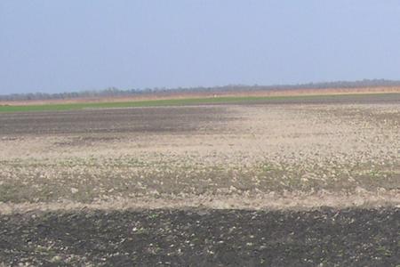 Rete di monitoraggio qualità dei suoli agricoli