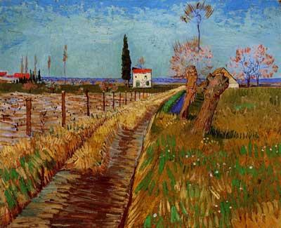 """Vincent van Gogh, """"Sentiero attraverso i campi con salici"""", Arles: 1888. Olio su tela,  Collezione privata, Svizzera."""