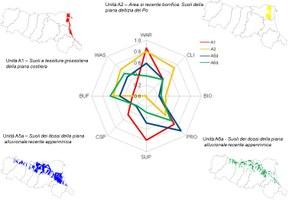 Fornitura media delle funzioni dei suoli in 4 rilevanti unità di pedopaesaggio della pianura emiliano-romagnola