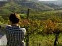 I colori della terra - 3° parte - Italiano