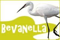 bevanella_logo