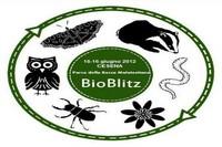 bioblitz cesena logo