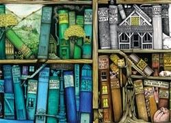 immagine allusiva ad una libreria